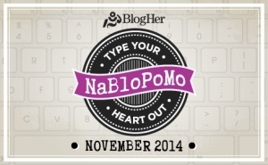 National Blog Posting Month - November 2014